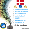Denmark Targeted Spotify Plays Promotion Package