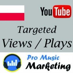 USA Targeted YouTube Views