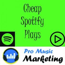 Cheap Spotify Plays (Worldwide)